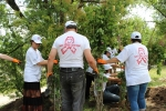 In Almaty was planted the alley of remembrance dedicated to the AIDS Victims